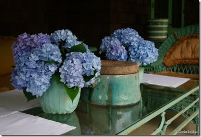 martha-blog-hydrangeas