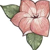 CNR Flower.jpg