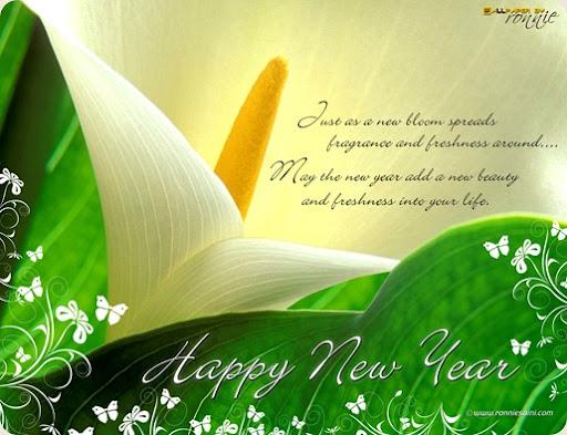new year's resolution calendar. new-year-2010-wallpaper