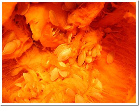 Orange Guts 2