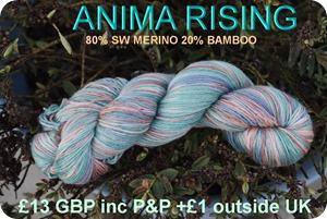 anima rising 1