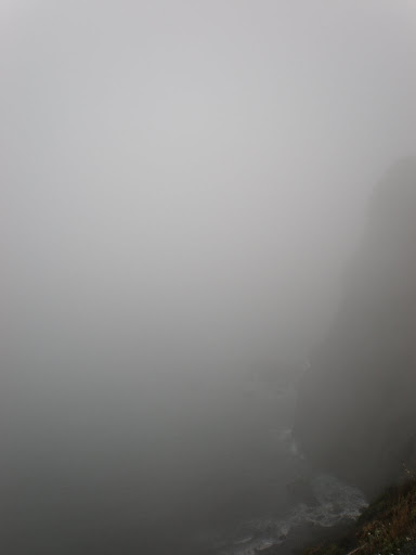 The heavy fog - didnt see much of anything all day!