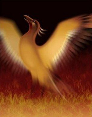 طائر العنقاء phoenix.jpg
