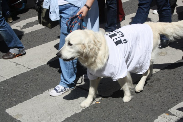 Manifestación queremos galego06.JPG