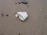 Chalk on Beach