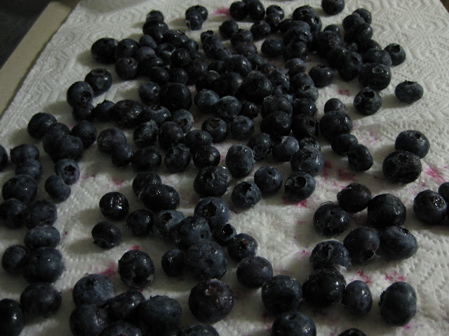 Thawing, rinsing and drying blueberries
