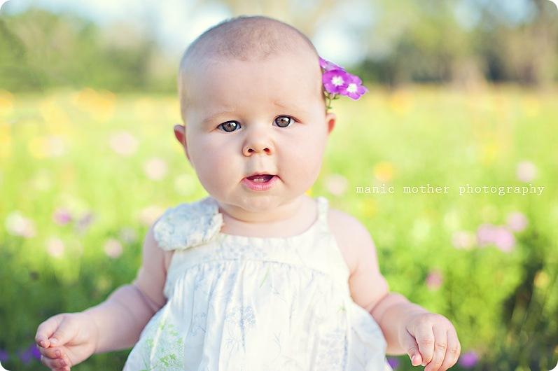 gainesville-baby-photographer