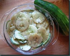 cuke salad070510