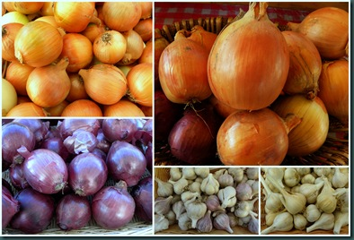 onions collage