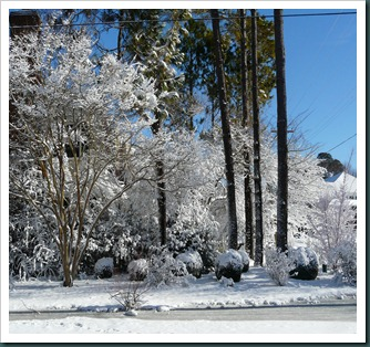 snow scene020710