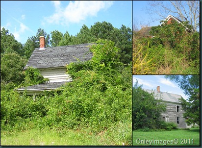 hidden homes collage