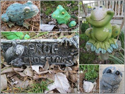 garden frog collage0511