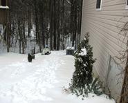Winter Storm Jan 2010 036