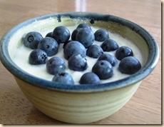 foodblog 120