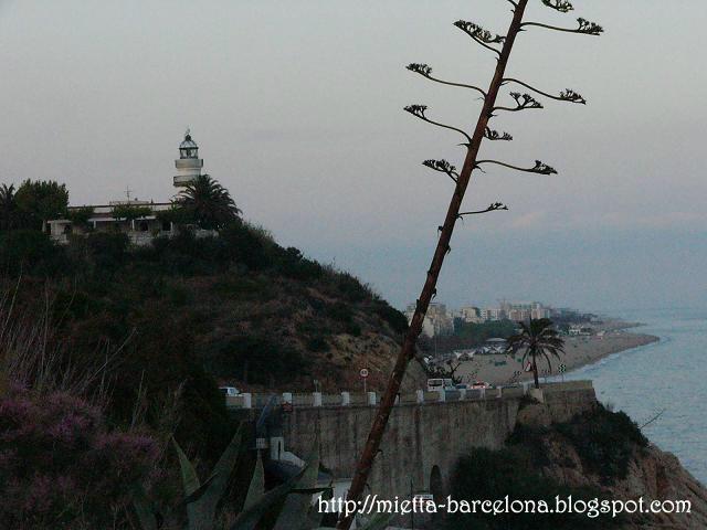 Costa de Sant Pol de Mar y Calella (Побережье Сант Пола де Мар и Калейи)
