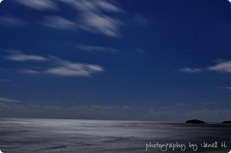 moonlit (Large)