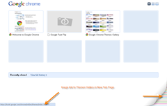 link to themes gallery in new tab page of Google Chrome 3.0.195.25.
