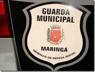 maringa
