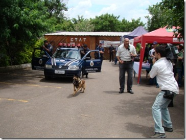 IV Campeonato Intercanis dasGCMs (86)