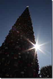 December 2010 372