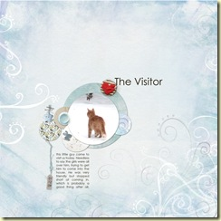 The-visitor