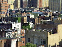 Location: New York</p> <p>Story: We were having a couple of drinks in the meat packing district. The district is going through a massive renovation and scaling up to the upper classes of society. Not sure why we were admitted. The restaurant was located on top of one of the building. This was one of the views. I was fascinated by the rooftops with so many plants of them. Just did not seem like our image of New York.