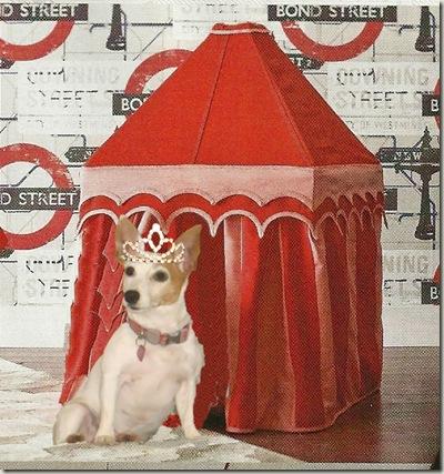 sweetie tent