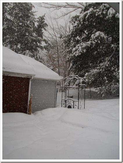 snowstorm 2.11 013