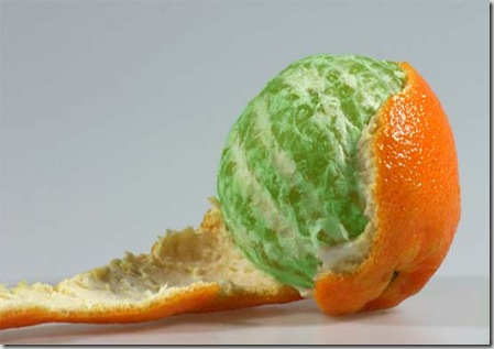lab_image_green_orange