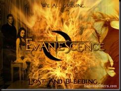 EvanescenceevanescenceLinkinSoldiers [Original Resolution]