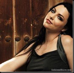 Evanescenceamy leeLinkinSoldiers [Original Resolution]