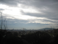 View from Guell Park