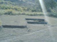 Kanha Meadow3.jpg