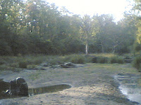 Kanha7 River.jpg