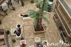 Фото 11 Lionnes Hotel