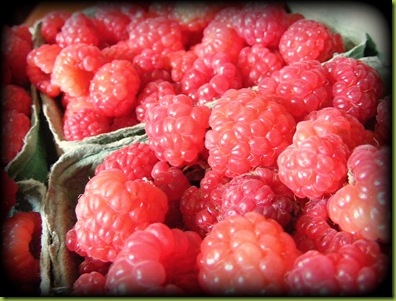 Raspberries.jpeg