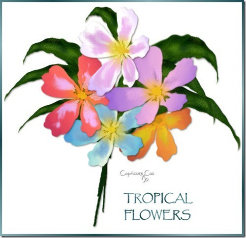 CG_TropicalFlowerCollection[1]2