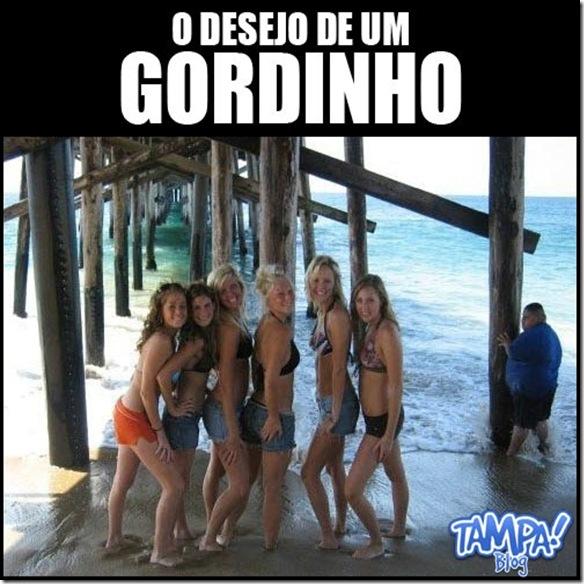 gordinho238-thumb