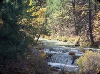 Burney Falls, )oct 2010 085