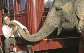 agua-para-elefantes-water-for-elephants-robert-pattinson