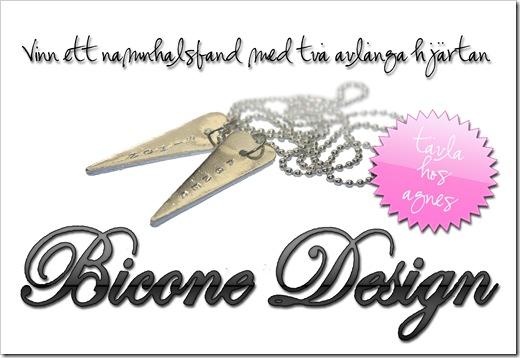 Bicone Design 01