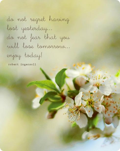 enjoytodayweb