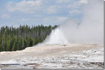 Yellowstone 2009 101