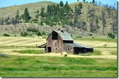 Montana 2009 027