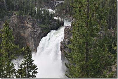 Yellowstone 2009 106