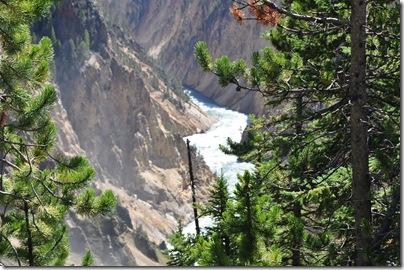 Yellowstone 2009 071