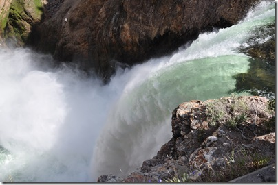 Yellowstone 2009 093
