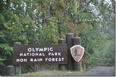 Hoh Rain Forest 018