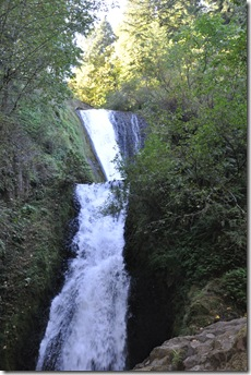 Oregon Water Falls 103