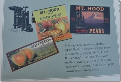 Mt Hood 058